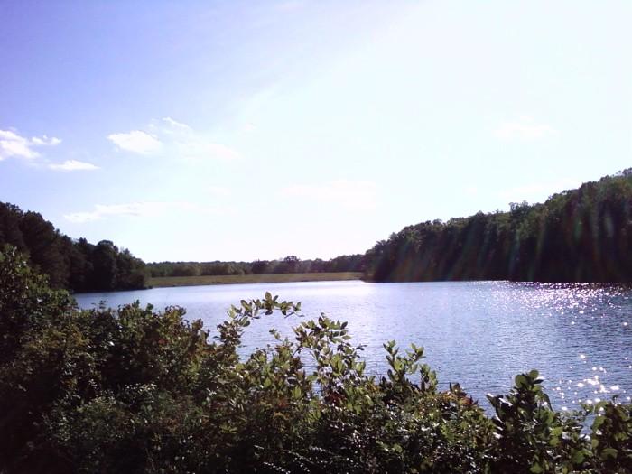 Royal Lake 031