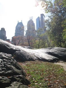 Central Park 188