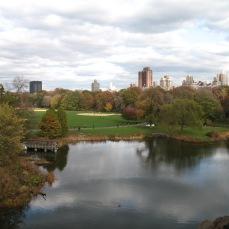 Central Park 204