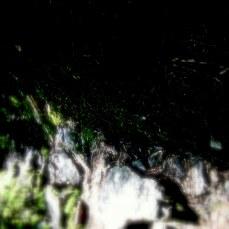 summer-2010-1484.jpg