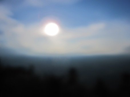 Summer 2012 516